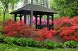 toledo botanical garden gazebo m_A1G7179.jpg
