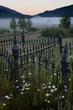 view toward cemetery gate 0709_MG_4322 m.jpg