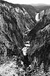 yellowstone falls b&w m.jpg