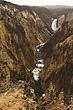 yellowstone falls m.jpg