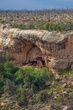 cliff dwelling beneath fire damaged forest 0711_MG_9307 m.jpg