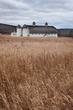 white barn 0112_A1G2414 m.jpg