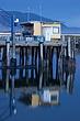 yellow dock shack 0611_MG_3985 m.jpg
