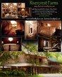 Collage 2 8-8-13.jpg