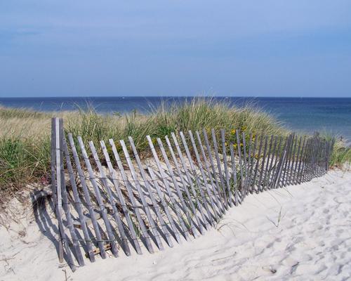 Cape Cod Dune.jpg