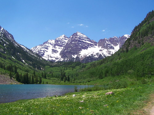 Field of Flowers at maroon Bells.jpg