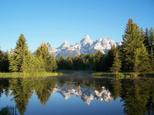 Grand Teton Reflection III at Beaver Pond.jpg