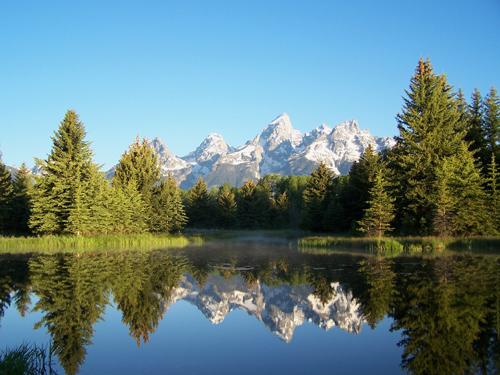 Grand Teton Reflection III at Beaver Pond.jpg