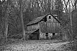 Barn in the Woods (Black and White Edition).jpg