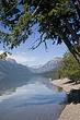 Shoreline Beauty-Lake McDonald.jpg
