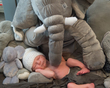 Baby hugged by elephant.jpg