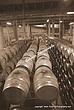 Botti di vino  IMGP7994-22 sepia.jpg