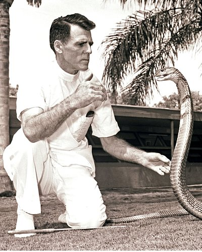 CELEBRITIES 2-212  Bill Haast catching cobra-close up.jpg