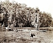 EVERGLADES (5-019LR)  bird  rookeries-two birds w Seminole man.jpg