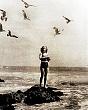 PUBLICITY (11-148LR) woman feeding sea gulls from rock circa 1930  .jpg