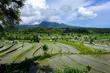 Bali 1(1).jpg