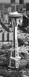 Aerial Needle Vert Pano BWP(1).jpg