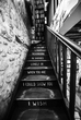 Shakespeare and Company Steps(1).jpg