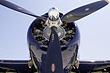FZ2_3385-93 Gruman TBM-3E.jpg