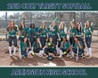 Arlington HS Softball 8 x 10 Team Serious Pic.jpg