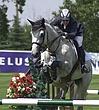 010 Equestrian.jpg