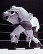 Alan Colbeck v Brian Maxine(checked trunks)7  edited  Jul70.jpg