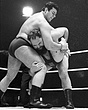 Arion Manousakis v Ian Campbell1  edited  27Mar65.jpg