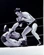 Dick Conlan v Maxine(checked tights)1   edited  Apr67.jpg