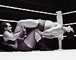 Ray Fury v Barry Douglas(leotard)2   edited  1966.jpg