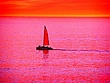Sherbert Sunset Sail.jpg
