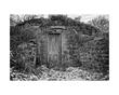 Hobbit House BW.jpg