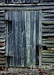 South Carolina Barn Door.jpg