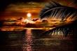 SunsetKona41.jpg