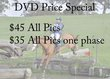 AA-Price Special.jpg