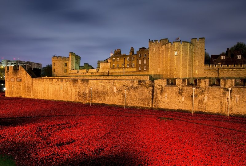Poppies represent Rivers of Blood to commemorate the war dead of WWI - London.jpg
