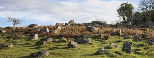 A rocky outcrop - Dartmoor - Devon - England (Available as Panoramic 42 x 18 in only).jpg