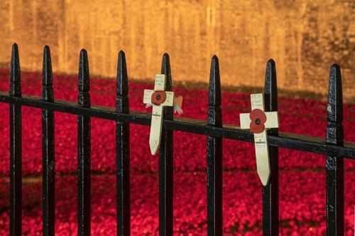 Remembrance Crosses_i.jpg