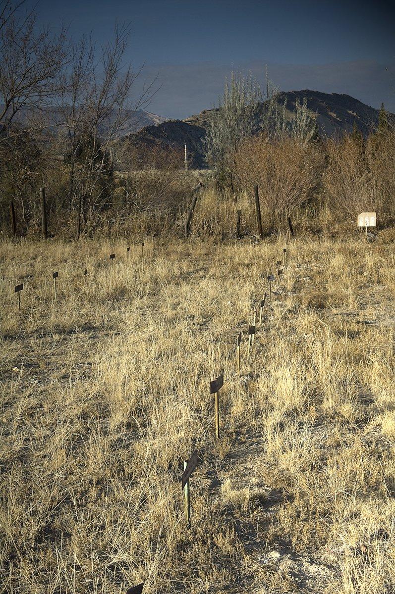 Colorado 001 web 2 :: Colorado - Lehigh Valley Photographer