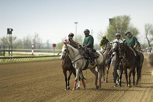 Horseracing-224-Edit-Edit.jpg