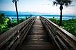 Pathway to Paradise.jpg