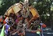 carnival19dscf0030_1050905.jpg