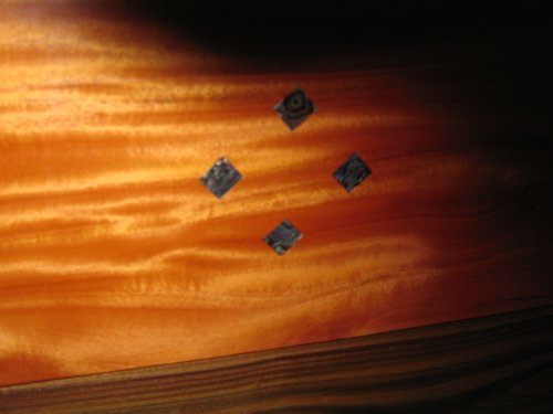 Mother of pearl inlay.jpg
