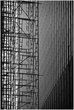 09Chi.Scaffolding_0697g.jpg