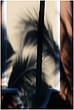 12PuntaCana.Shadows_0415.jpg