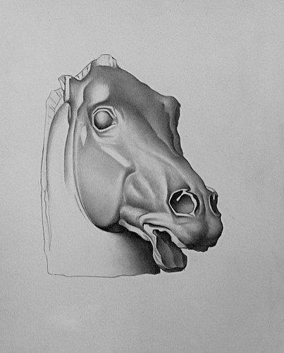 GRAPHITE - Parthenon Horse Bargue Study.jpg