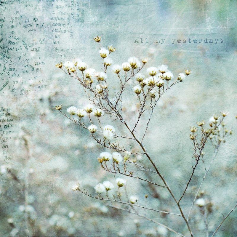 All My Yesterdays.jpg :: ©2011 LKG Photography