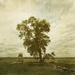 The Angle at Gettysburg.jpg