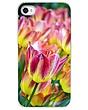 The Last Hurrah of Spring iPhone Case.jpg