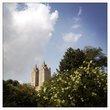TowersInTheTrees.jpg