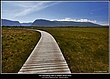0707 -Western Brook Pond  walkway.jpg